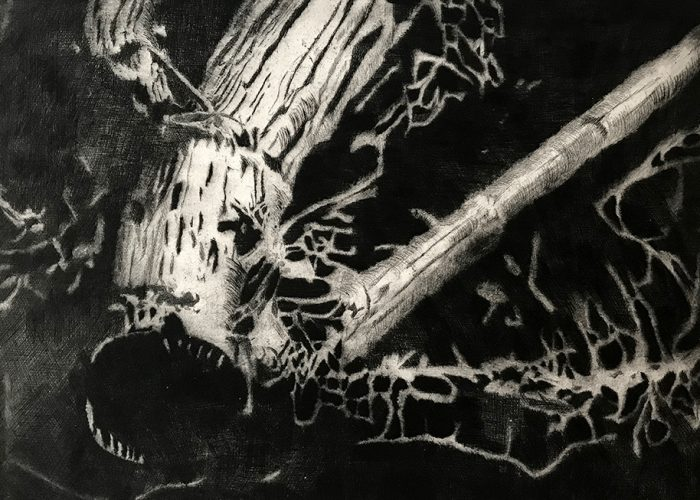 Ein Stück Wurzel | 1991