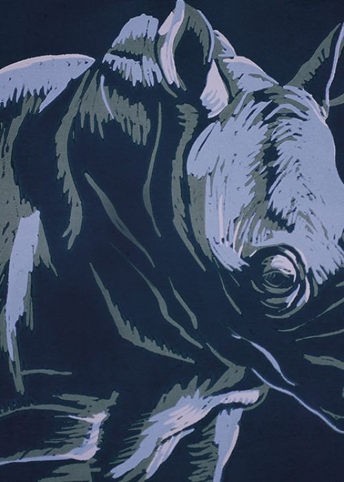 "Holzschnitt Zyklus 2  ""Afrikas Tierwelt"" | Nashorn"